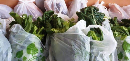 La cooperativa Mercado Concentrador amplía sus canales de comercialización con la provisión de frutas y verduras a beneficiarios de PAMI