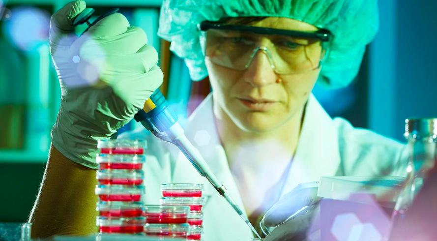 Investigación: desarrollan una nueva terapia para el tratamiento de cinco tipos de cáncer