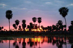 Formosa ingresó al mapa global como destino de turismo de naturaleza con el Bañado La Estrella
