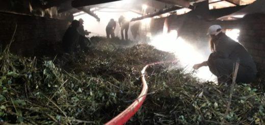 Se incendió un secadero en Andresito y las pérdidas superarían los 2 millones de pesos entre estructura y producción
