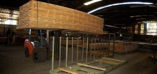 """Crisis en el sector maderero: """"Este es un problema estructural y no coyuntural"""", dijo el presidente de AFOA"""