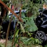 Justicia y accidentes de tránsito con muertos: cómo se aplican y cuáles son los agravantes tras la última reforma del Código Penal