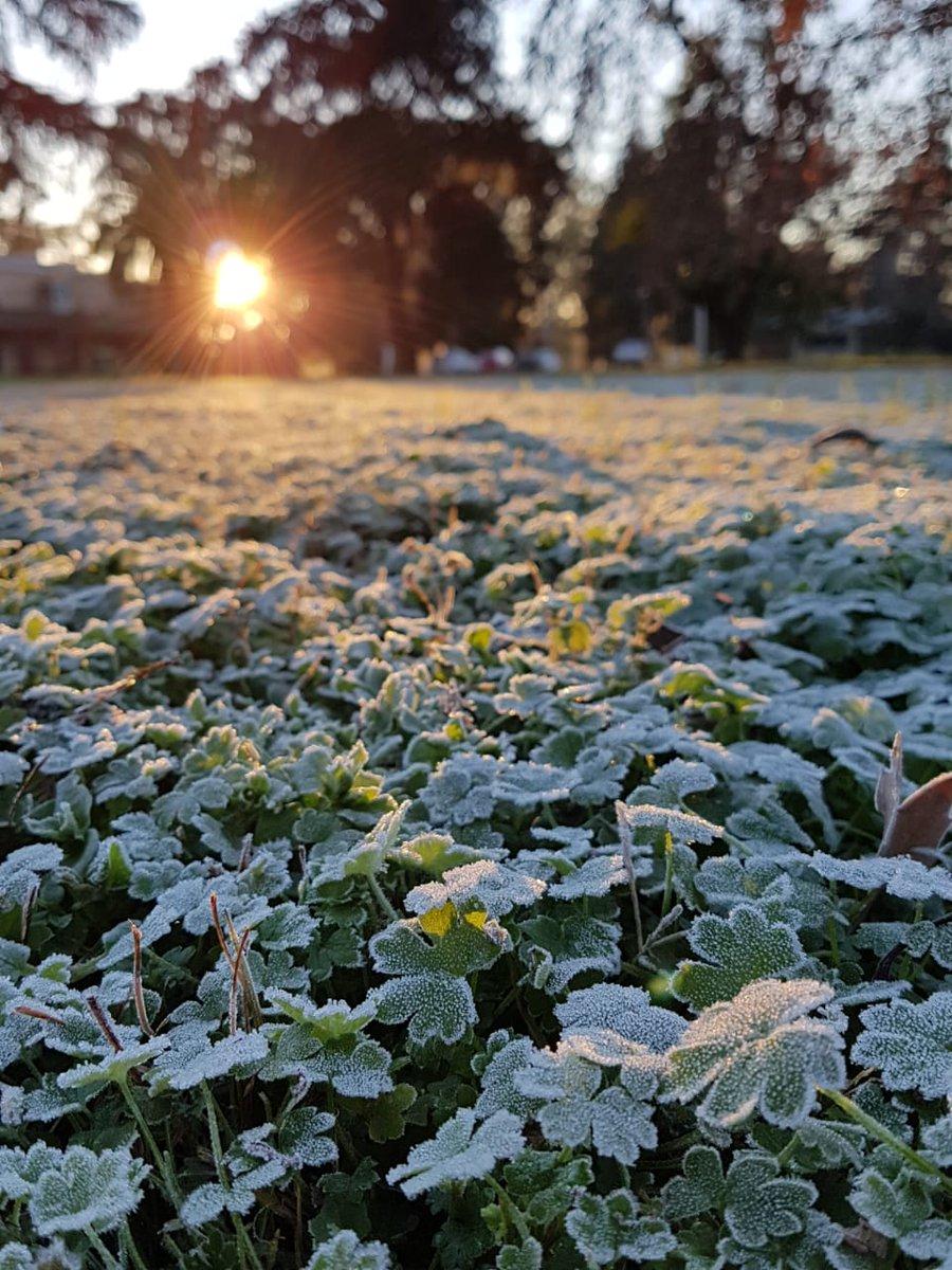 Sensaciones térmicas bajo cero y recipientes con agua congelados: las postales que dejó la helada en Misiones