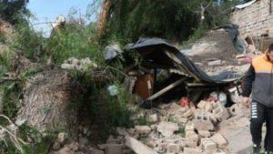 Mendoza: por el viento Zonda, un árbol cayó sobre una casa y mató a una mujer