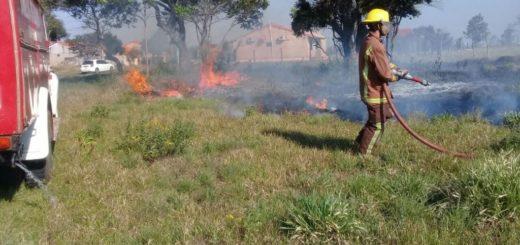 Juan Manuel Díaz reveló que en 24 horas lograron reducir a la mitad los focos de incendio en Misiones