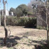 Femicidio en Buenos Aires: ahorcó a su novia de 16 años y después se suicidó