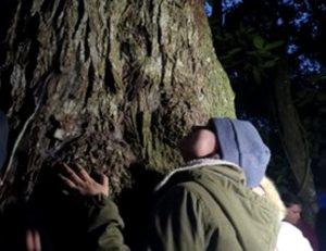 Los Colosos de la Tierra de Paraguay visitaron al amanecer del sábado un centenario árbol gigante Yvyra Pytâ en el Parque Nacional de Caazapá