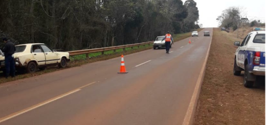 Campo Ramón: despiste de un vehículo dejó daños materiales