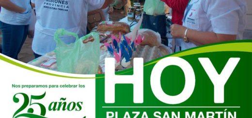 Productos de la chacra copan la plaza San Martín de Posadas en el marco de las actividades por los 25 años de las Ferias Francas