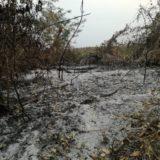 El presidente paraguayo coordina tareas para aplacar nuevos focos de incendios en el norte