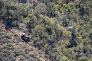 Salta: Greenpeace documentó topadoras arrasando territorios del yaguareté