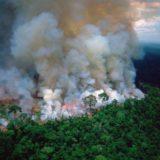 Jair Bolsonaro insinuó que las ONGs podrían estar detrás de los incendios forestales en la Amazonía