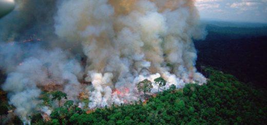Alerta mundial por los incendios forestales: desde la selva de la Amazonía brasileña se extiende un corredor de humo en países de América del Sur