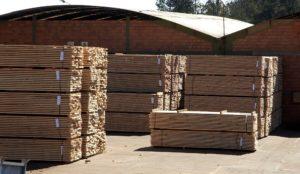 Comercio exterior: junio registró alza interanual mensual en las exportaciones forestales, pero bajas en madera aserrada respecto a mayo