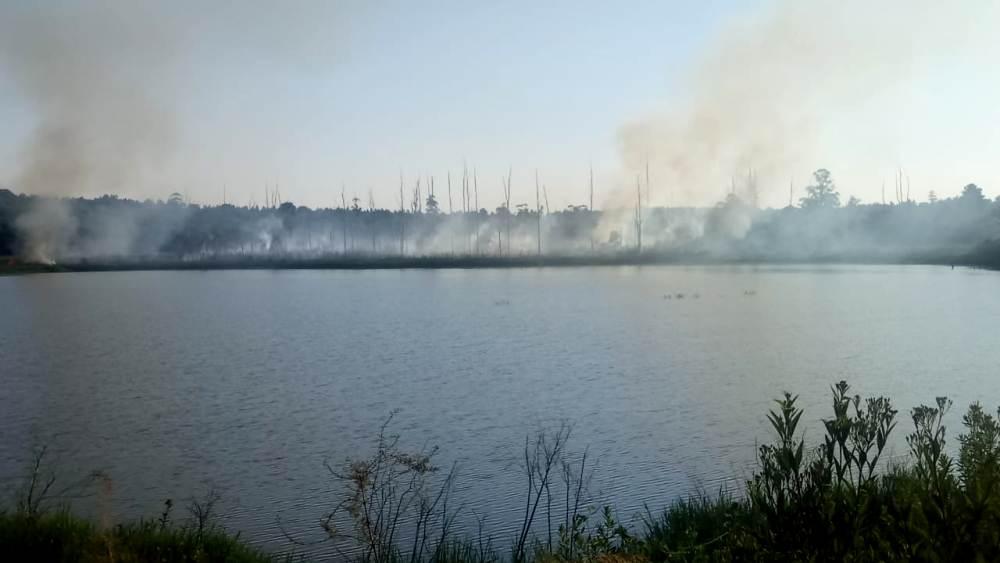 Corpus: vecinos alertaron sobre el apeo de bosques nativos y quemas realizadas en áreas de la reserva íctica, en Puerto Maní