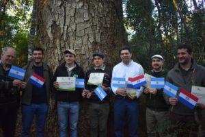 """Un Timbó gigante de la Reserva Guaraní de la UNaM se convirtió en el primer árbol internacional registrado por los """"Colosos de la Tierra"""" de Paraguay"""