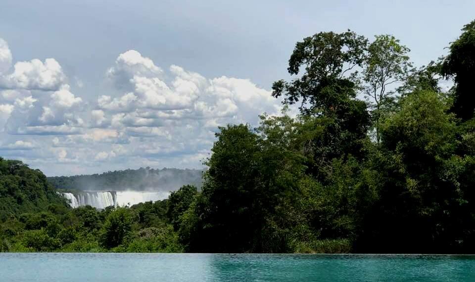 Con la Selva Misionera, la Argentina realiza un gran aporte al equilibrio global del clima