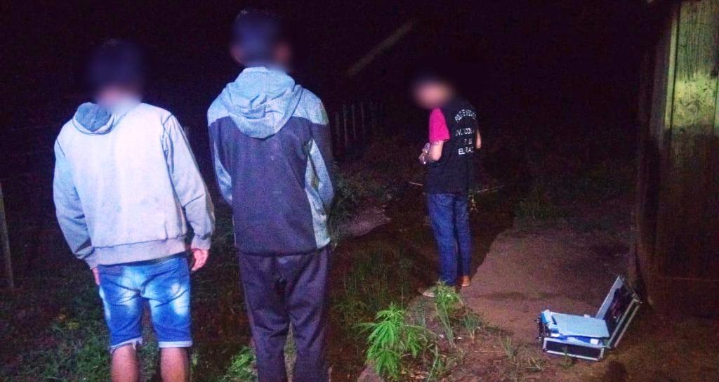 La Policía incautó plantas de marihuana en el patio de una vivienda en Colonia Mado
