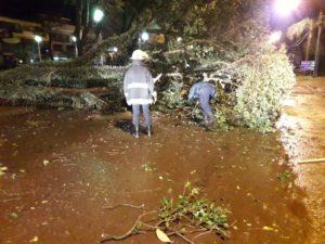 Damnificados por el temporal: la Policía asistió a familias por voladura de techos y caída de postes