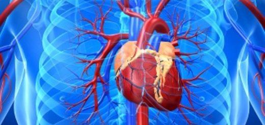 Piden se sancione una ley de concientización por la salud cardiovascular de la mujer