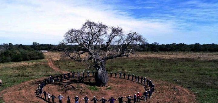 """Misiones recibirá por primera vez a los """"Colosos de la Tierra"""" de Paraguay"""