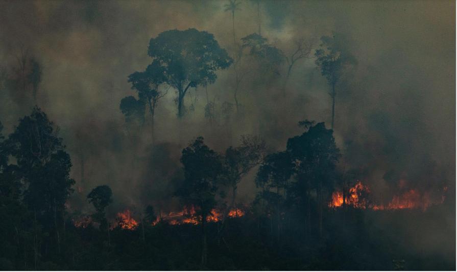 """Trump afirmó que Jair Bolsonaro """"está haciendo un gran trabajo"""" y elogió su respuesta contra los incendios en la Amazonia"""