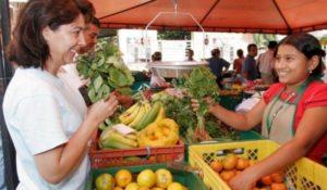 San Vicente: productores de Misiones se reunieron para celebrar 24 años de vida de las ferias francas