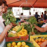 Misiones consolidó su oferta secundaria de formación agropecuaria