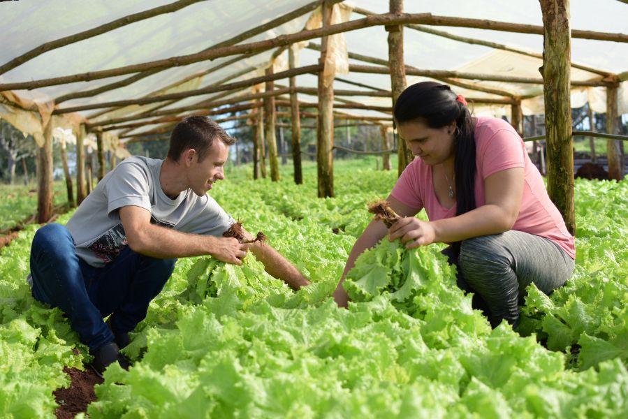 Convocan a jóvenes Agricultores para participar de Plaza Joven