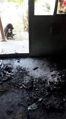 Un héroe: un cuidador sufrió graves heridas al rescatar ocho perros de un incendio