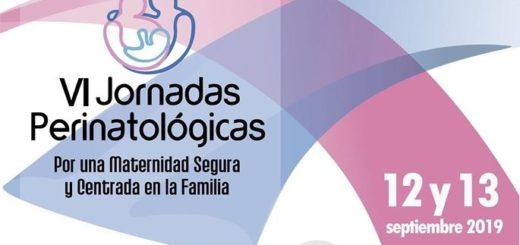 """""""Por una maternidad segura y centrada en la familia"""" se realizará la VI edición de las Jornadas Perinatológicas en Posadas"""