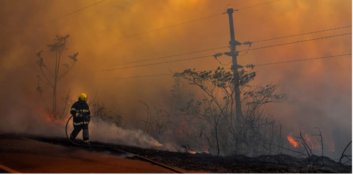 Andresito: importante incendio forestal sobre ruta 19