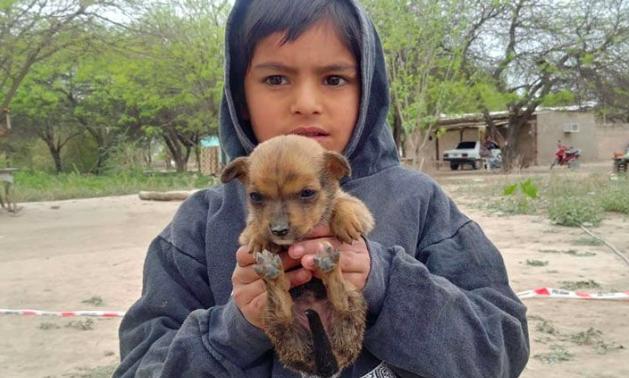 Una bebé de un año quiso rescatar a su perrito y cayó a un pozo de cinco metros