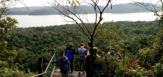 Embajadores de la Selva Misionera: guardaparques guiaron a estudiantes de primaria de Puerto Pirámide, de Península de Valdés, en un atractivo recorrido por las áreas naturales