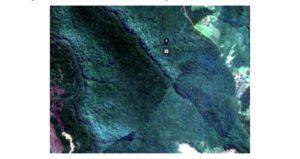 Ecología informó a la comunidad la situación de la Reserva Privada Yaguarundi y aseveró que no se registró apeo ilegal de monte en el sitio