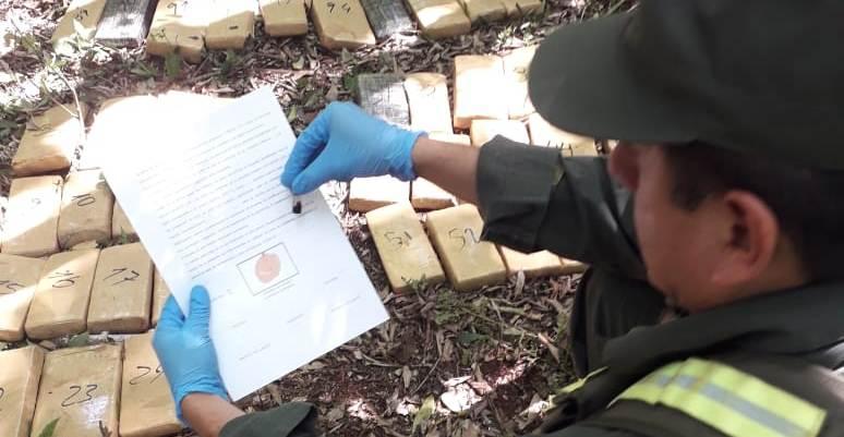 Gracias al operativo Sendero Verde, lograron secuestrar más de 80 kilos de marihuana