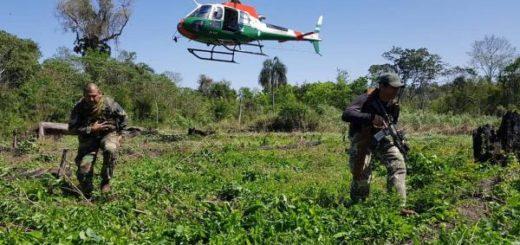 Fuerzas Federales de Paraguay y Argentina realizan el primer operativo en conjunto contra el narcotráfico en la región