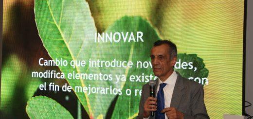 El INYM apuesta a la innovación en búsqueda de nuevos horizontes para la yerba mate