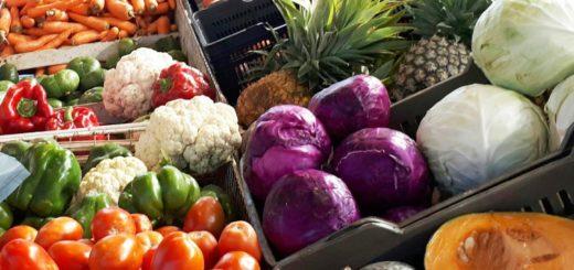 El Gobierno provincial impulsa una red de mercados concentradores de Misiones