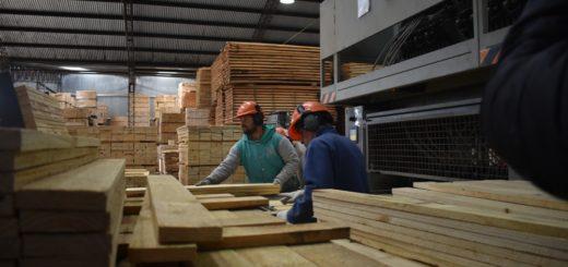 """A un mes de la cuarentena, urge a las PyMEs de la cadena foresto-industrial medidas que permitan hacer frente al """"pago de sueldos y los costos fijos y fiscales"""""""