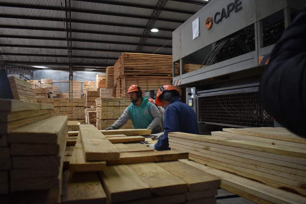 """Román Queiroz, presidente de la AMAYADAP: """"La industria de la madera necesita que se reactive la construcción, créditos a tasa cero y moratoria impositiva"""""""