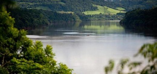 Piden justicia por el homicidio de Roberto Ríos, un reconocido profesional y polémico luchador ambiental por los ríos libres y la energía sustentable