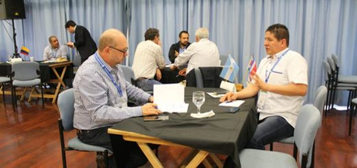 Más de 30 empresas misioneras y siete extranjeras participan de la Ronda Internacional de Productos Maderables