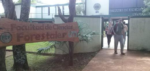 """Estudiantes de la Facultad de Ciencias Forestales se capacitaron en Brasil para darle """"valor agregado"""" a la industria maderera en Misiones"""