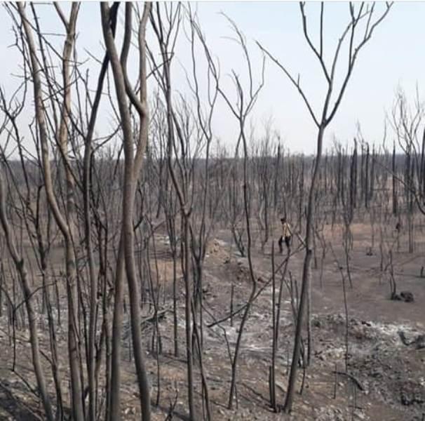 El humo que afecta ahora a Posadas sería de los incendios en el Chaco Paraguayo