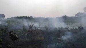 Harto de que le incendien sus yerbales en Andresito, el Gringo Barreto amenazó con correr a los intrusos a los tiros
