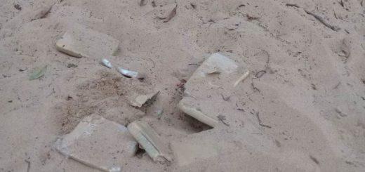 Jardín América: secuestraron 15 panes de marihuana en el patio de una casa
