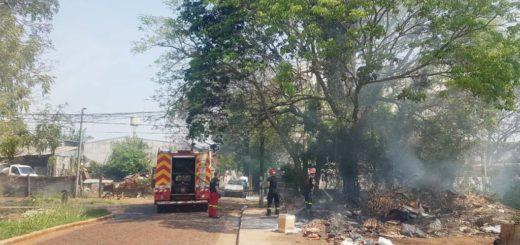 Peligro de incendios: se prendió fuego un malezal en Posadas