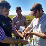 Profesionales agrónomos y ambientales trabajaran en conjunto por una nueva ley de Fitosanitarios y manual de buenas prácticas para las explotaciones productivas