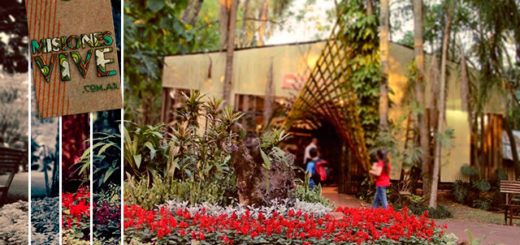 Montecarlo: cuenta regresiva para la Fiesta Nacional de la Orquídea y Provincial de la Flor